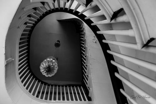 Bull & Finch, Black & White Spiral