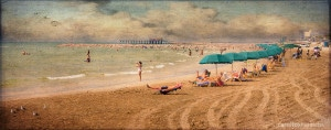 A Day at the Beach: Galveston Island